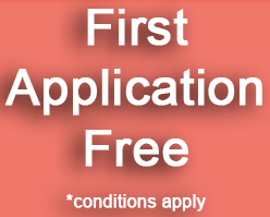 First Application Free