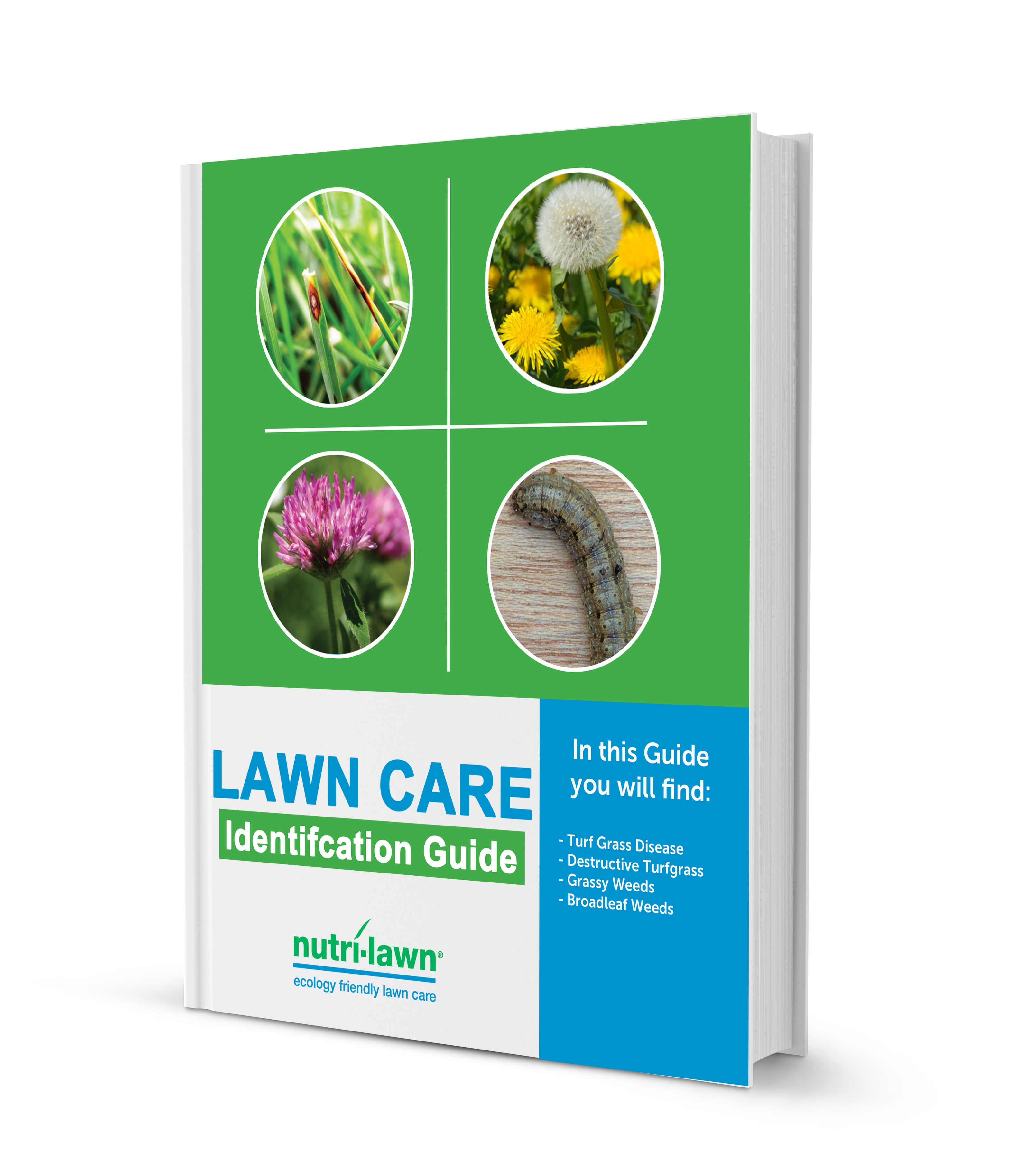 Lawn Care Identification Guide