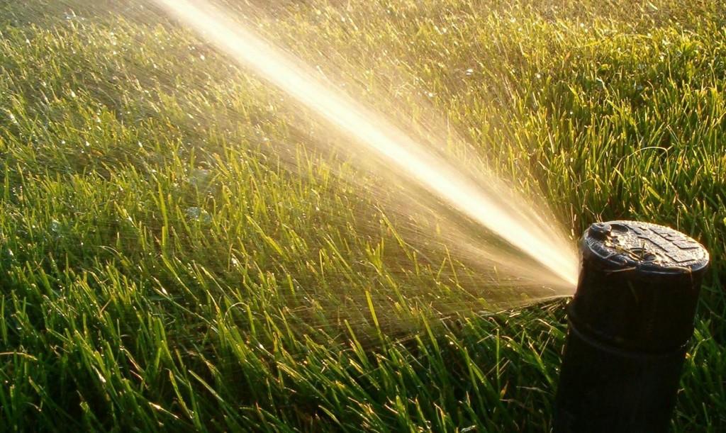 Lawn-Sprinkler-Head-Photo-2-1024x611.jpg
