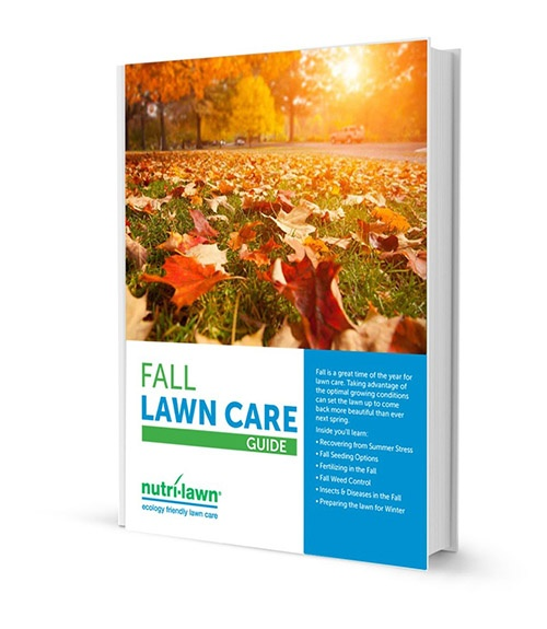 fall_lawn_care_guide_cover_v1