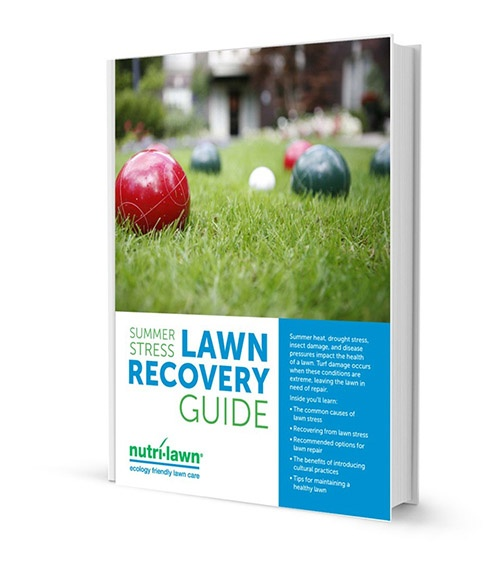 lawn_recovery_ebook_v1