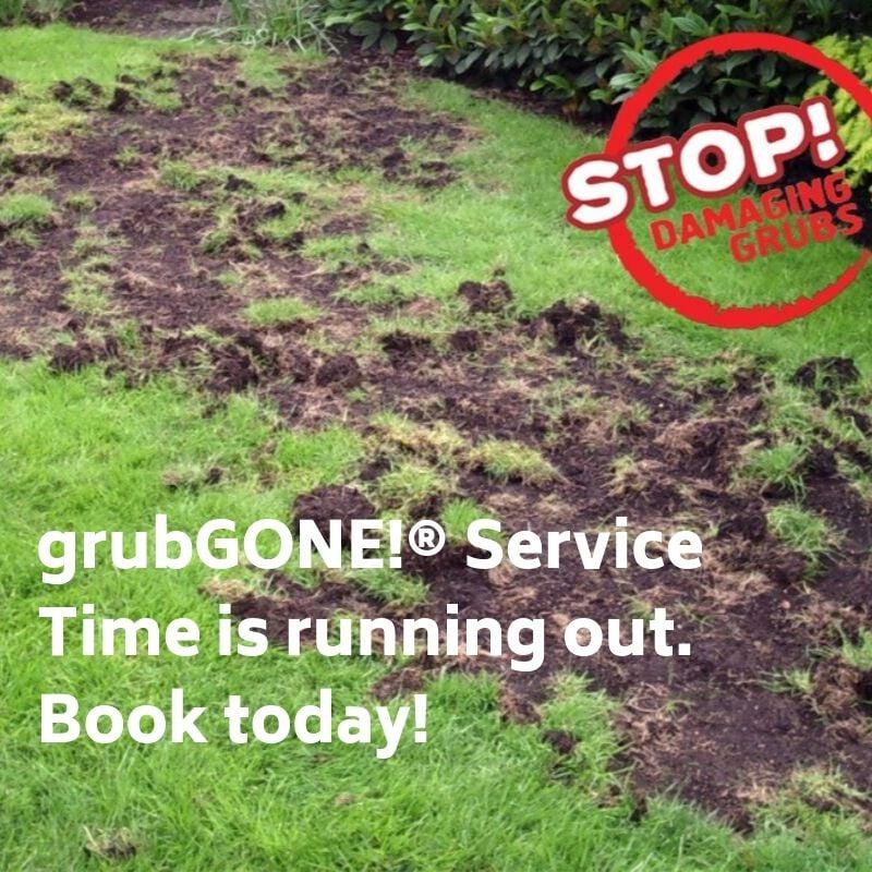 grubgone-running-out-ott