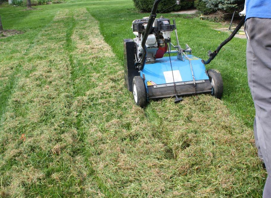 nutri-lawn lawn dethatching service