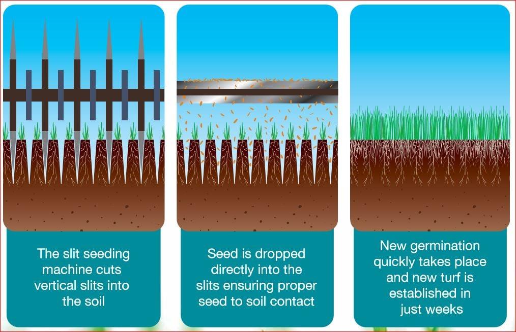 nutrilawn slit seeding diagram