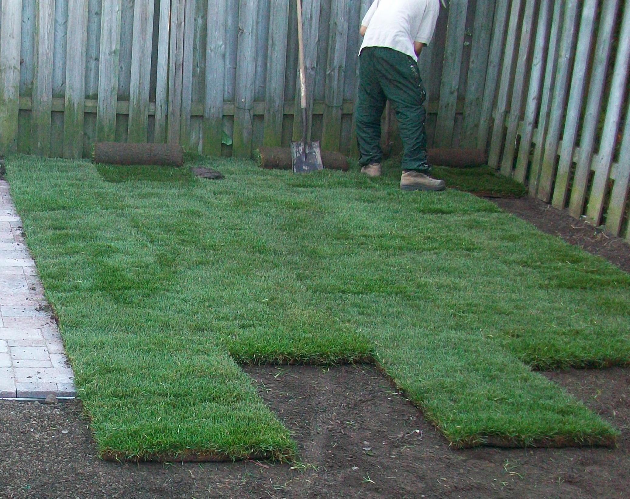 Resodding a lawn