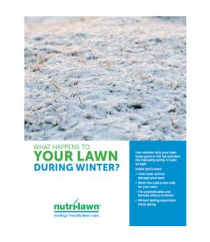 Lawn Care Identification Guide