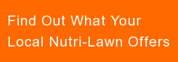 Find Out What Your  Local Nutri-Lawn Offers