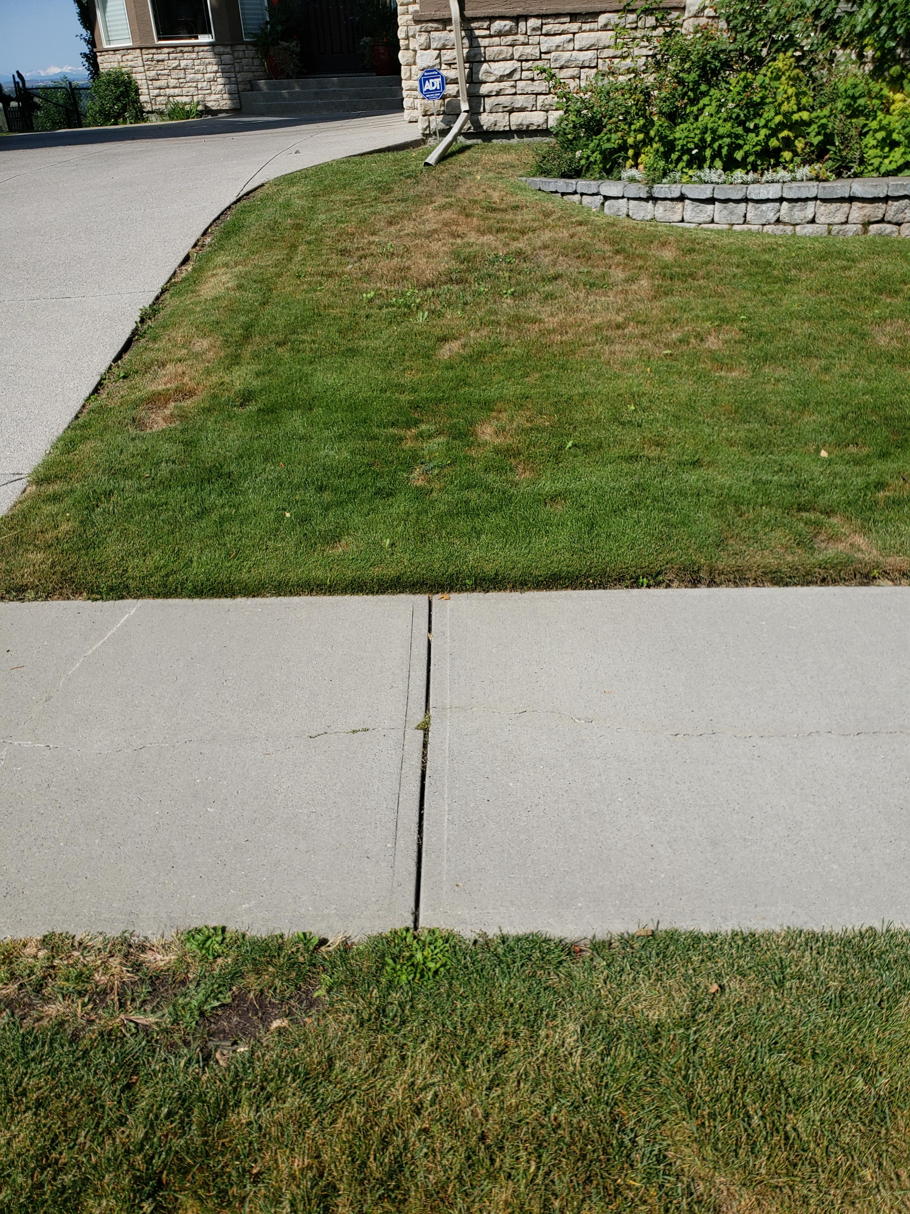 Brown Lawn? We Can Help! - Featured Image