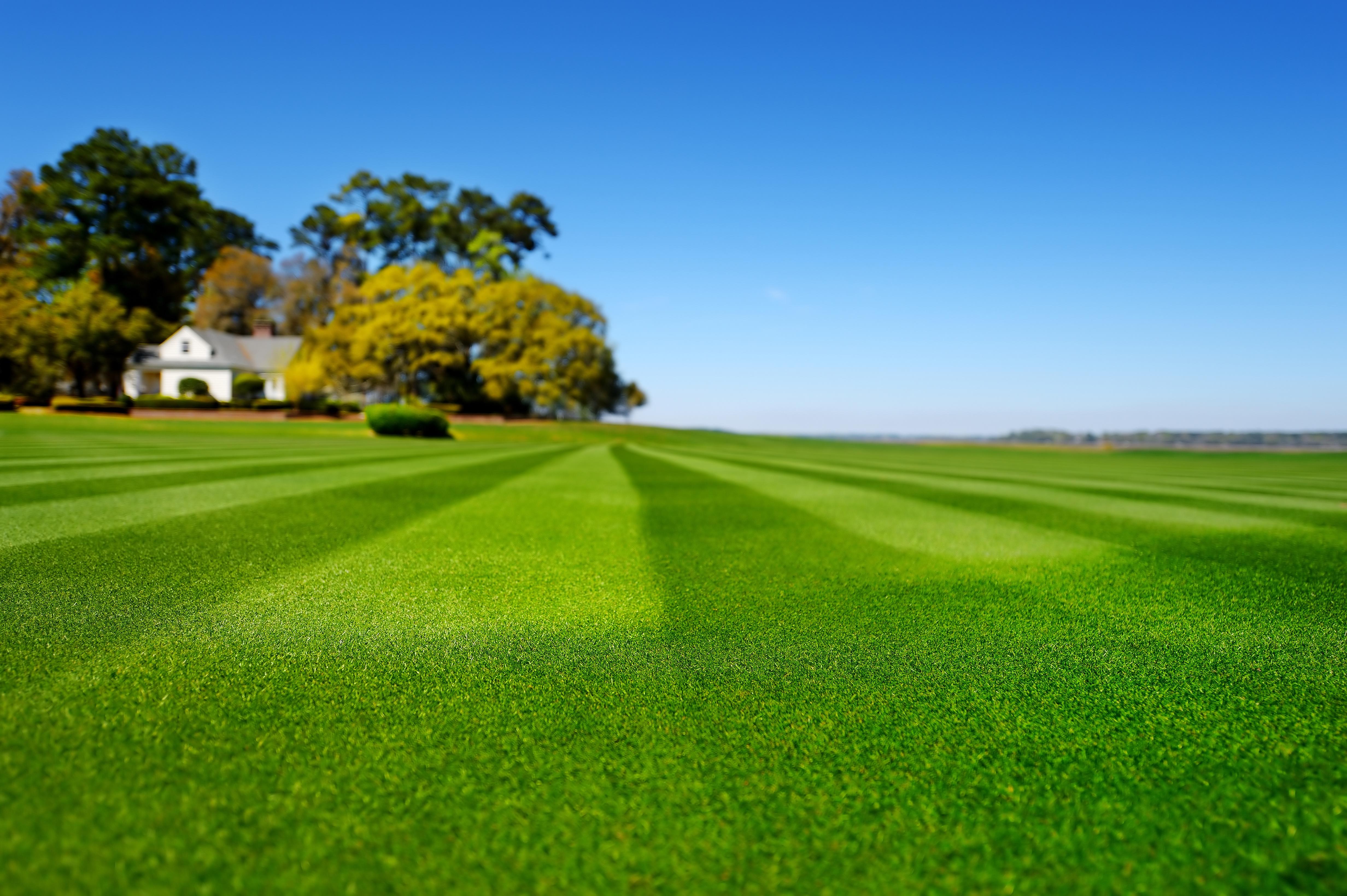 lawn care Canada