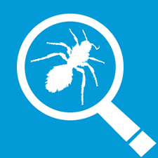 nutrilawn insect control icon