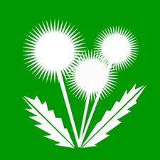 nutrilawn weed control icon